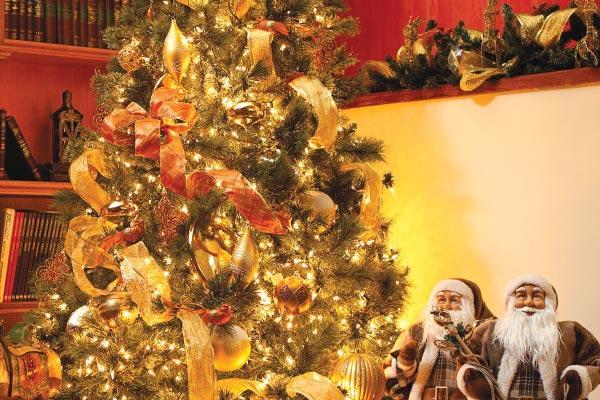 Seis sencillos pasos para amar y decorar su rbol navide o for Como obtiene su alimento un arbol