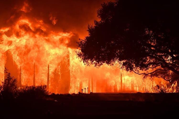 Industria del vino tardará años en recuperarse por incendios devastadores en California. (Foto Prensa Libre: AFP)