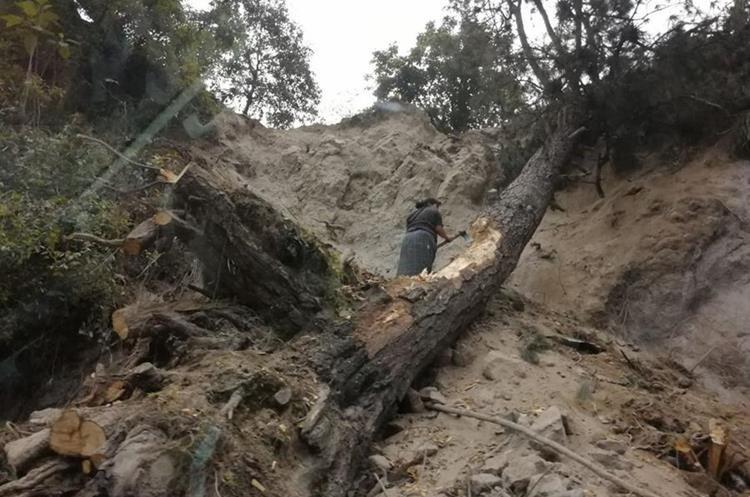 Una mujer corta un árbol que fue derribado por la lluvia y el viento, en la ruta a Chinautla, Guatemala. (Foto Prensa Libre: César Pérez)