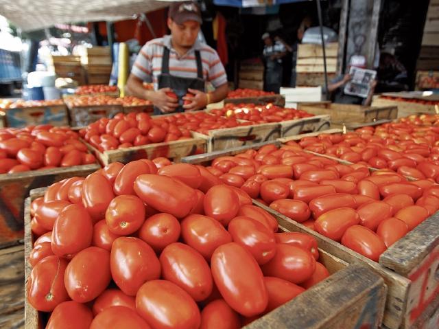 El tomate fue el principal producto que disparó la inflación a 5.22% en julio, reportó el índice de precios al consumidor. (Foto Prensa Libre: Hemeroteca)
