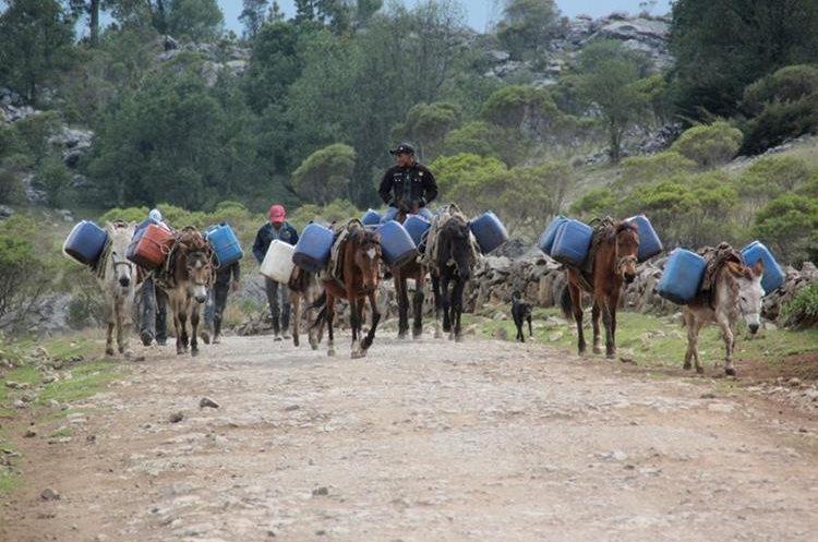 En los Cuchumatanes, algunos caminan hasta por 7km para encontrar un riachuelo para abastecerse del vital líquido. (Foto Prensa Libre: Mike Castillo)
