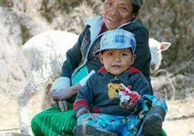 Josefa Pérez y el pequeño Urías, de 6 años, quien padece desnutrición, cuidan el pequeño rebaño de ovejas de la familia, en La Libertad, Comitancillo. (Foto Aroldo Marroquín).