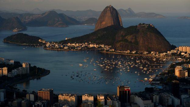 Brasil le debe su nombre a un árbol. (GETTY IMAGES)