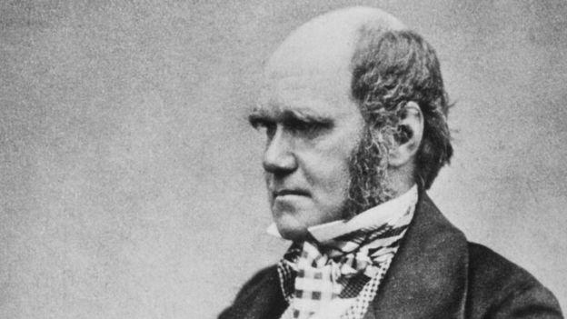 Darwin encaja en esa idea según la cual los hombres calvos son inteligentes, influyentes y de estatus alto. (Wikimedia commons)
