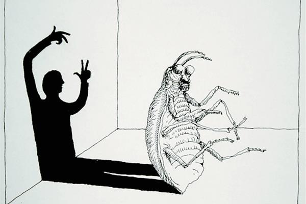 Kafka publicó en 1915 su obra maestra, La Metamorfosis. (Foto Hemeroteca PL)