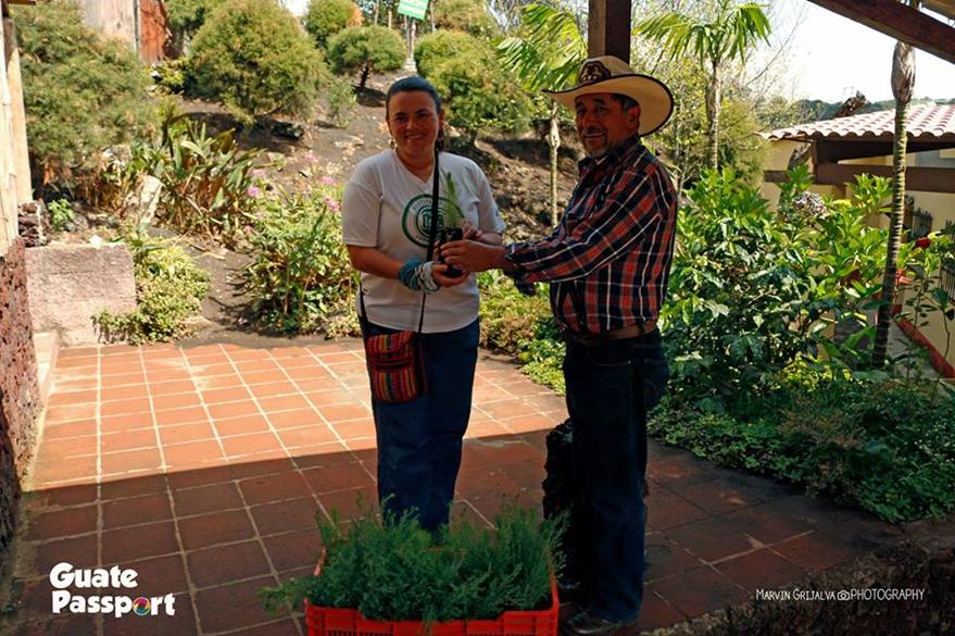 Un guatemalteco donó varios árboles al proyecto. (Foto Prensa Libre: Guate Passport)