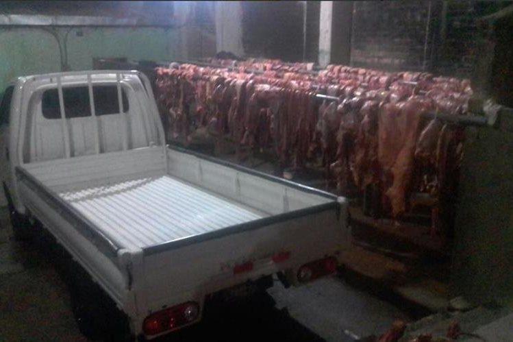Las autoridades decomisaron más de cinco mil libras de carne de caballo en los operativos. (Foto: @FGR_SV).
