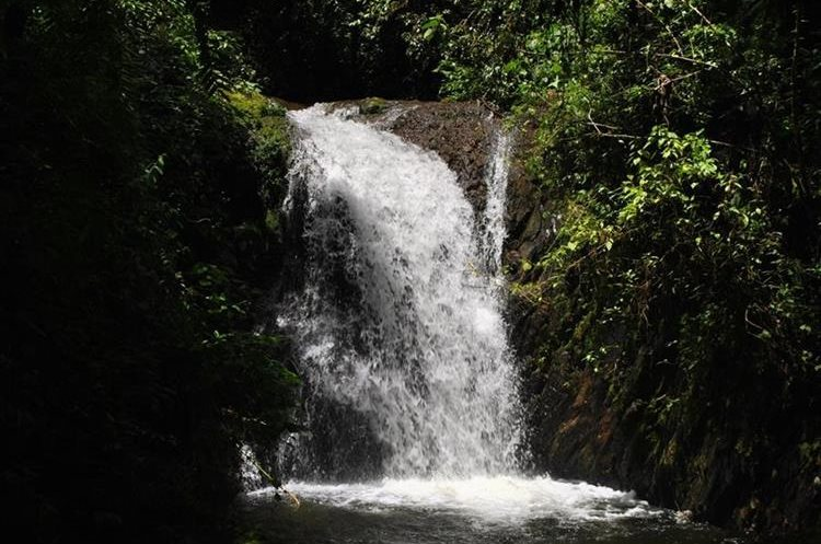 "Las aguas cristalinas de las cascadas invitan a darse un baño.&nbsp;<span style=""font-family: arial, sans-serif; font-size: 12.8px; text-align: justify;"">PRENSA LIBRE/ MARIO MORALES</span>"