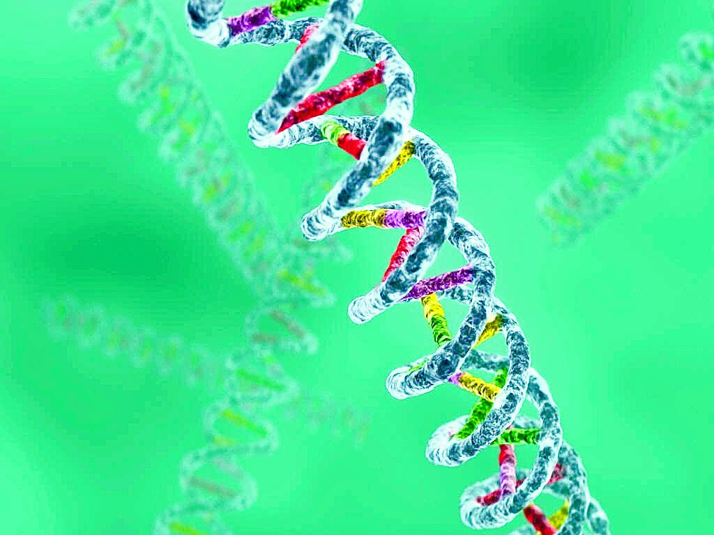 Imagen de la secuencia del ADN del ser humano. (Foto Prensa Libre: hemeroteca PL).
