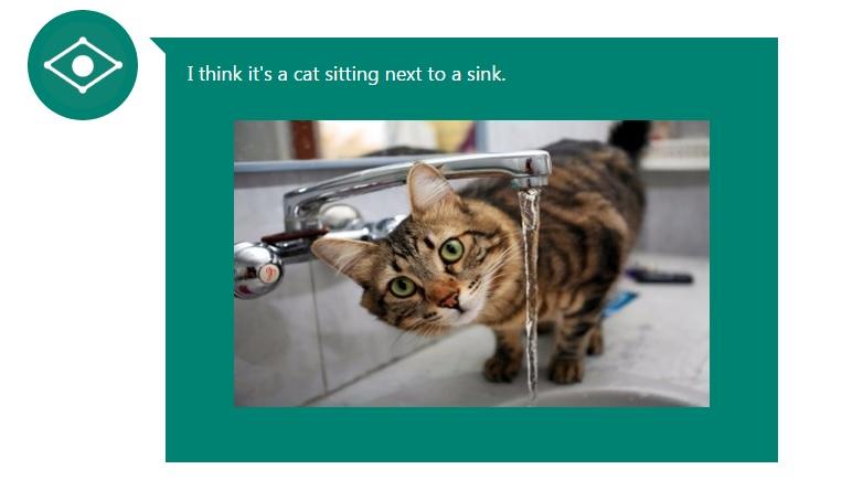 """""""Creo que es un gato sentado a la par de un lavamanos"""", describe CaptionBot sobre esta imagen."""
