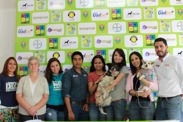 Representantes de organizaciones que participarán en la II Feria de adopción