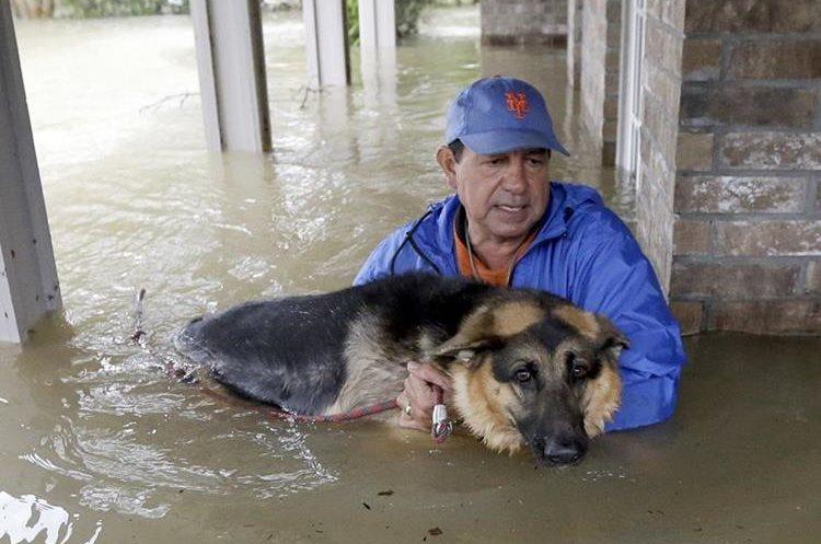 Joe García carga a su perra Heidi  para rescatarla de la inundación.