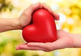 Hay ciertos alimentos que ayudan a evitar las enfermedades cardiovasculares.