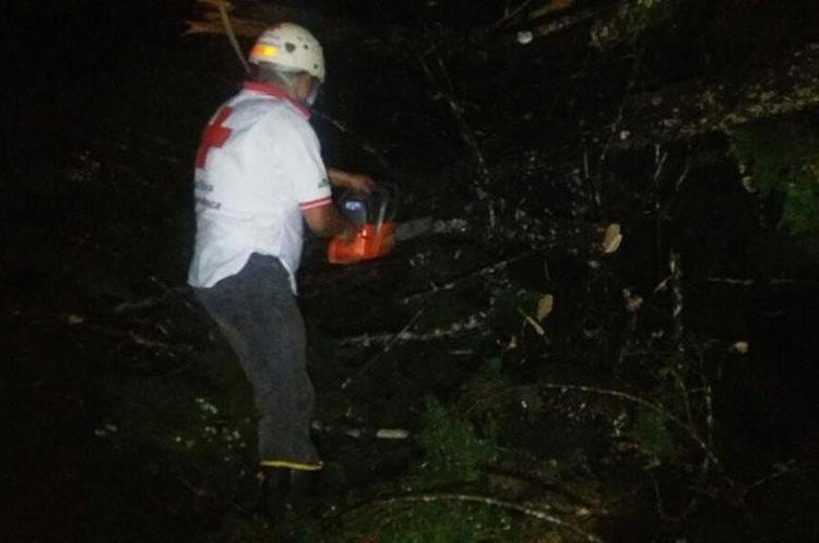 Bombero tala árbol caído por la lluvia en Cobán. Foto Prensa Libre:@CRGuatemalteca.