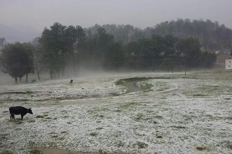 Campos en ruta hacia Totonicapán fueron cubiertos por el manto blanco. (Foto Prensa Libre: Cortesía)