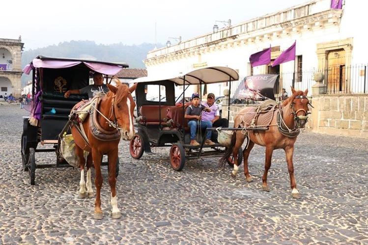 En la Ciudad Colonial operan unos 10 carruajes jalados por caballos. (Foto Prensa Libre: Renato Melgar)