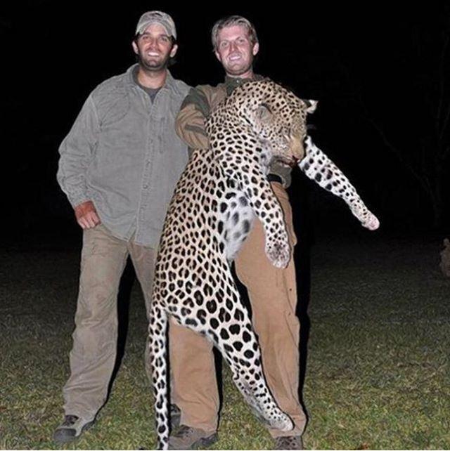 La imagen de los hijos del magnate sosteniendo el cadáver de un leopardo, en África, ha sido ampliamente compartida en redes sociales. (Foto: redes).