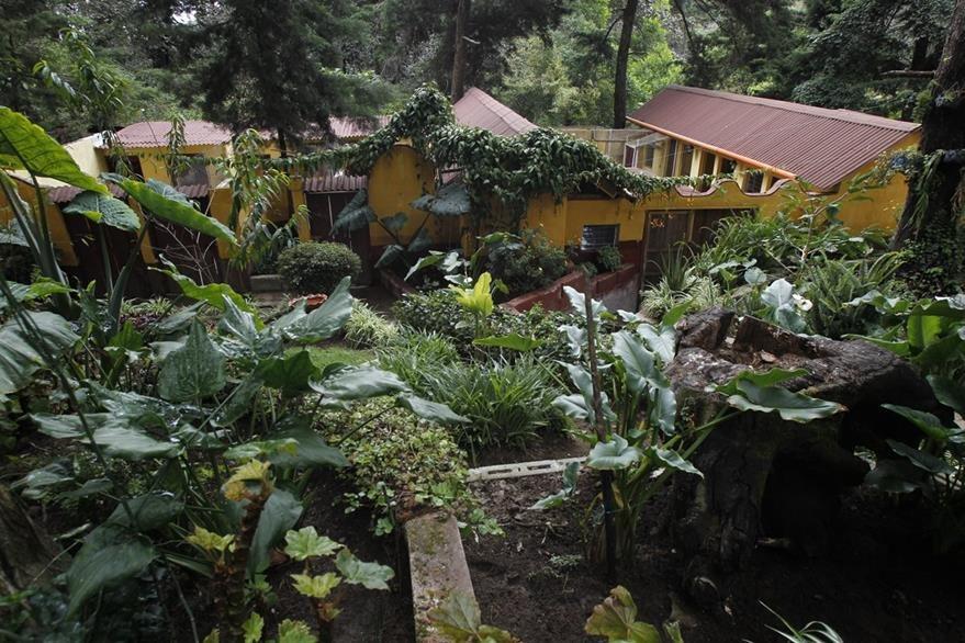 Pet Hotel, hotel para mascotas, En la ruta la Antigua Guatemala.   Fotograf'a: Paulo Raquec