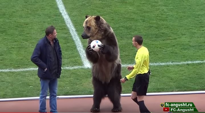El oso Tim sostiene el balón mientras observa a su entrenador