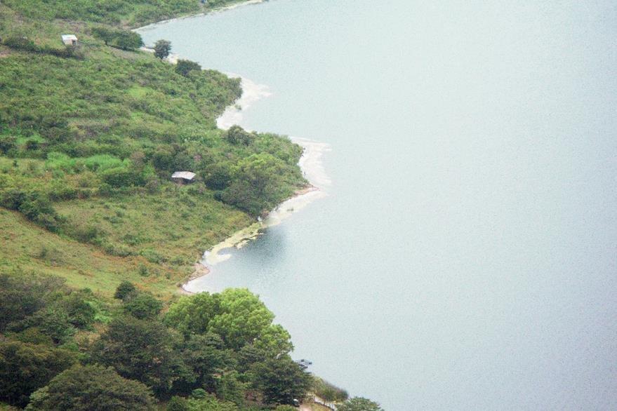 En la Laguna de Ayarza, Santa Rosa, se observa posible cianobacteria.  (Foto: Hemeroteca PL)
