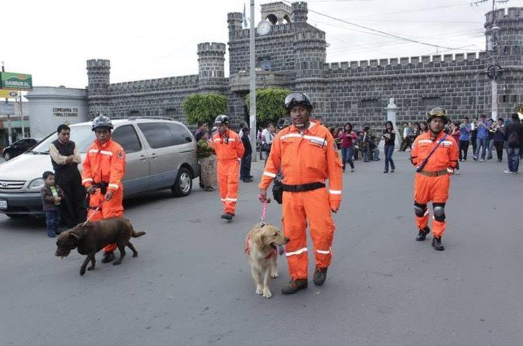 El trabajo de la Unidad Canina de la Patrulla de Rescate de los Bomberos Voluntarios es fundamental para salvar vidas. (Foto Prensa Libre: Víctor Chamalé)