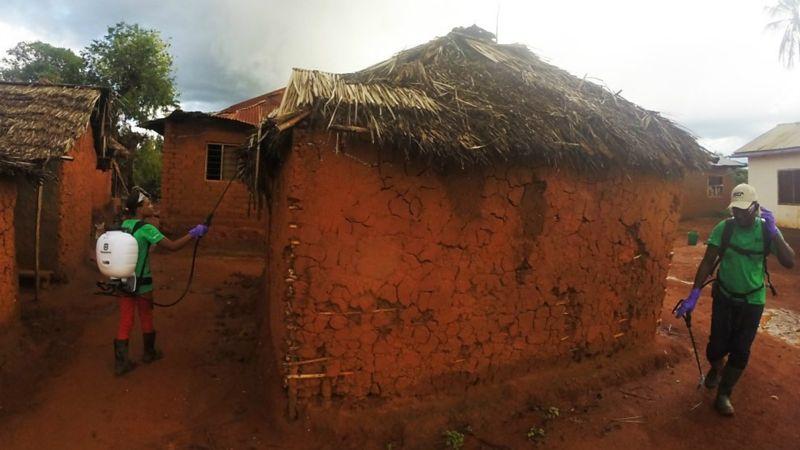 Las pruebas de campo en Tanzania dieron muy buenos resultados, con una reducción de dos tercios de la población de mosquitos. ELISON KEMIBALA