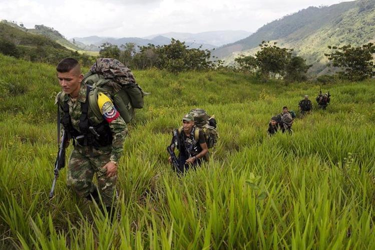 Las Farc y el Gobierno de Colombia se encuentran en negociaciones de paz. (Foto Prensa Libre: AP).