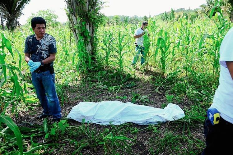 Autoridades observan cadáver que se halla entre milpa, en Sayaxché, Petén. (Foto Prensa Libre: Rigoberto Escobar)