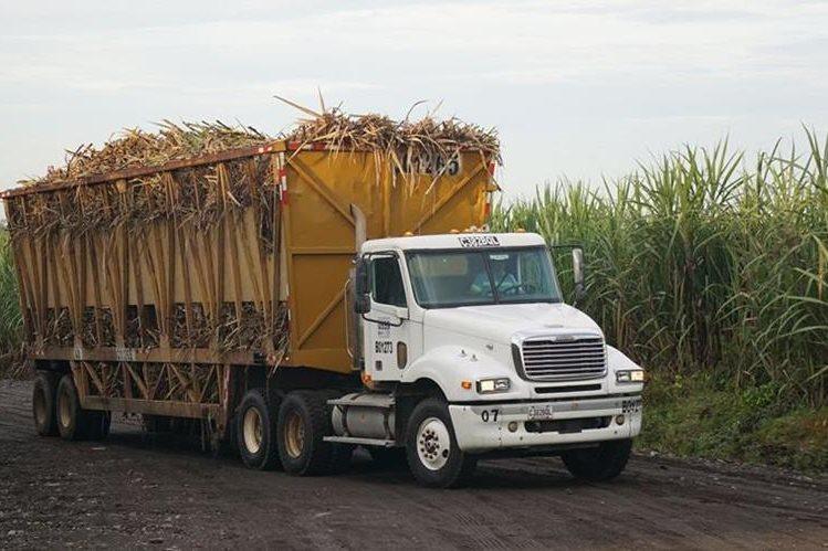 Muchos conductores de camión encuentran una oportunidad de trabajo con la llegada de la zafra. (Foto Prensa Libre: Enrique Paredes)