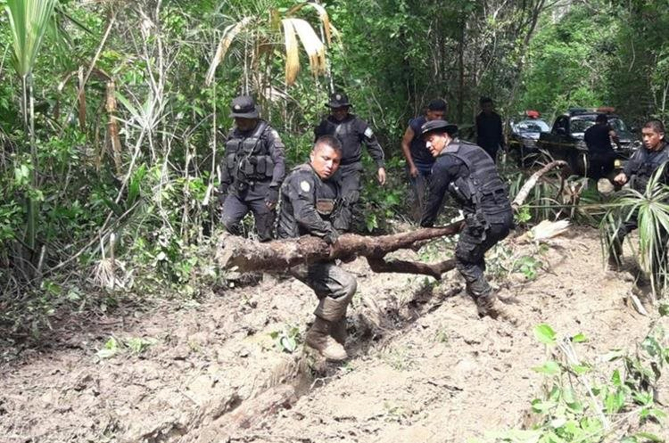 Un grupo de agentes coloca árboles para intentar que los autopatrullas no se atasquen en camino de la Biosfera Maya, Petén. (Foto Prensa Libre: PNC)