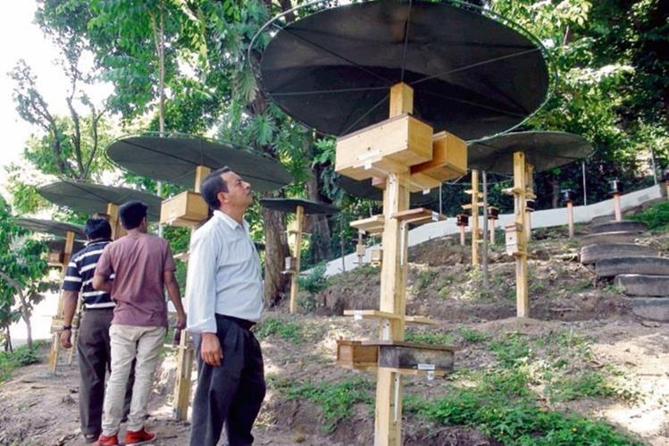 Un Invitado  a  la inauguración observa parte de  las instalaciones del CTTA, en Río Bravo, Suchitepéquez.