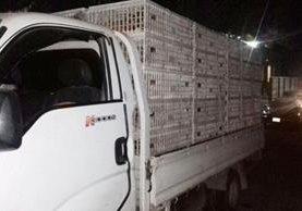 Gallinas incautadas eran trasladadas de forma irregular en un camión, en Chiquimula. (Foto Prensa Libre: Mario Morales)