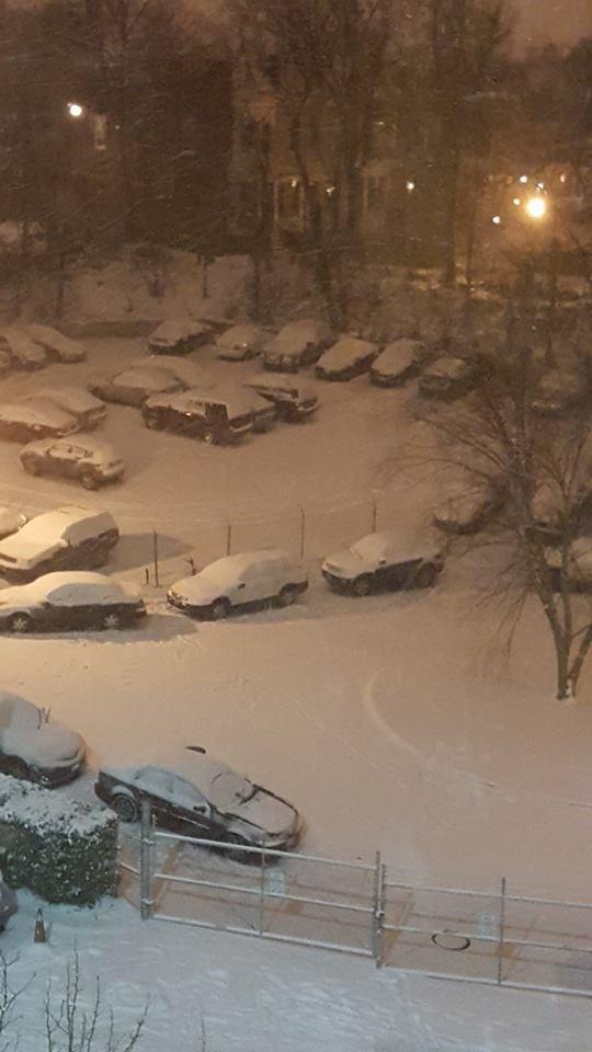 Decenas de vehículos cubiertos de nieve en Washington, EE. UU. (Foto cortesía: Blade Contreras).