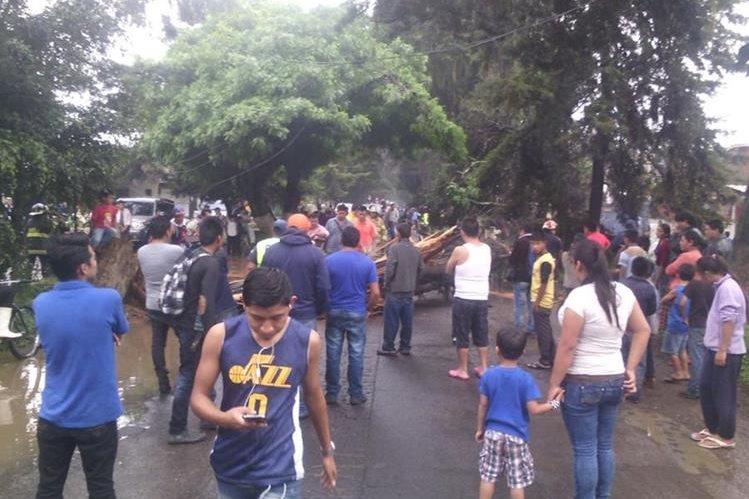 La ruta de Chimaltenango a la Antigua Guatemala quedo obstruida durante varias horas por la caída de cinco árboles. (Foto Prensa Libre: Víctor Chamalé)