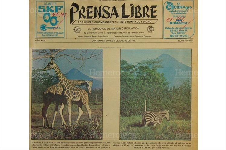 Portada del 07/01/1980 El parque Auto Safari Chapín es inaugurado en Taxisco, Santa Rosa. (Foto: Hemeroteca PL)
