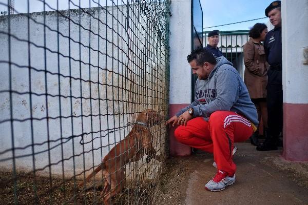 Un preso en la cárcel de alta seguridad de Monsanto toca un perro en la perrera. (AFP).