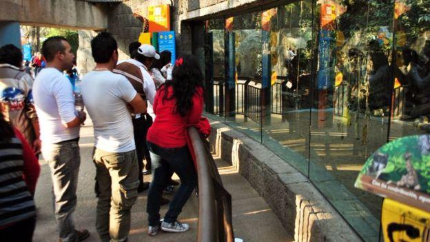 El zoológico de Chapultepec es el más grande del país. WIKIPEDIA