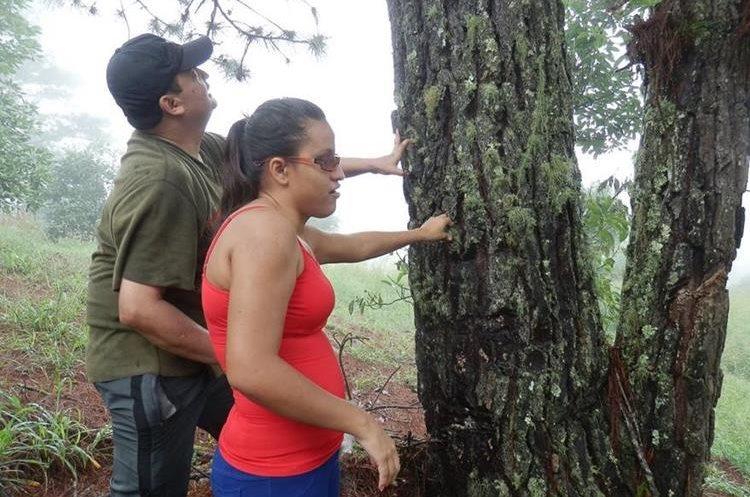 Un grupo de personas no videntes experimentaron su primer viaje a la montaña Las Granadillas en Zacapa. (Foto Prensa Libre: Christian Rodríguez)