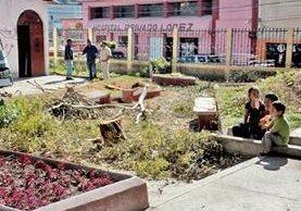 Niños observan lo que quedó de los árboles talados en el parque El Calvario, de Huehuetenango. (Foto Prensa Libre: Mike Castillo).