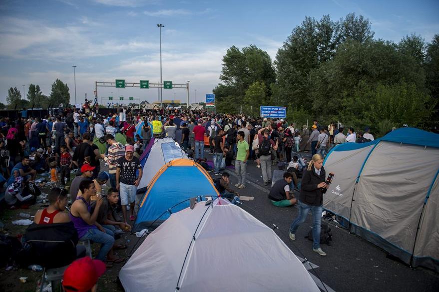 La crisis de inmigrantes ha desbordado Europa. Refugiados esperan en la frontera con Hungría en Horgos, Serbia. (Foto Prensa Libre: EFE).