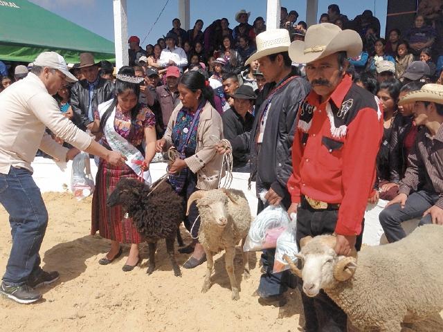Los ganadores son premiados por uno de los jurados, en la Feria del Cordero. (Foto Prensa Libre: Mike Castillo)