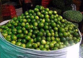El millar de unidades de limones se cotizó en Q600 en el mercado de La Terminal de la zona 4. (Foto Prensa Libre: Hemeroteca PL)