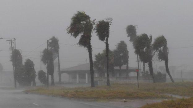 Las tormentas tropicales se convierten en huracanes cuando los vientos superan los 120 kilómetros por hora. (MARK RALSTON/AFP/GETTY IMAGES)