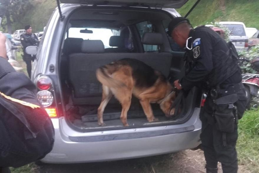 Un agente canino efectuó la inspección en el automotor. (Foto Prensa Libre: PNC)