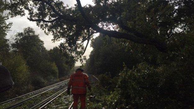 Los árboles caídos sobre las vías han causado interrupciones en el servicio de trenes. (Foto: Network Rail)