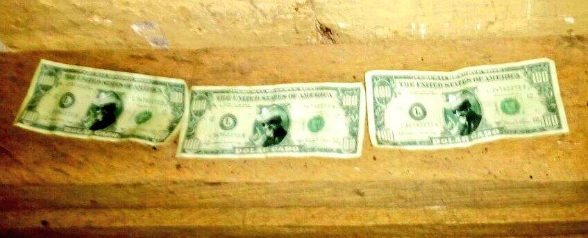 Estos son billetes falsos que dieron como recuerdo de la fiesta de Marlon Monroy. (Foto: Fiscalía de El Salvador)