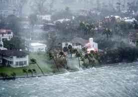 Irma se debilita en Florida, pero causa fuerte lluvia e inundaciones. (Foto Prensa Libre: EFE)
