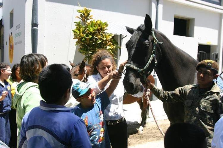 Estudiantes de la Escuela de Educación Especial que funciona en el Hogar Rafael Ayau, conocen acerca de los caballos que son utilizados para las terapias. (Foto Prensa Libre: Oscar García).