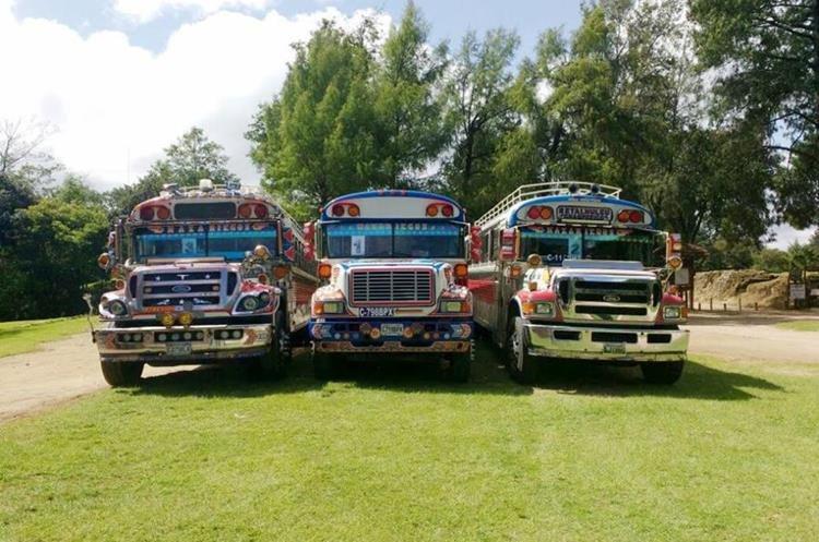 Tres de los buses que cuentan con el servicio