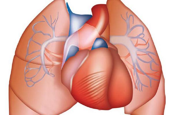 <p>Hoy es el Día de la Hipertensión Pulmonar</p>